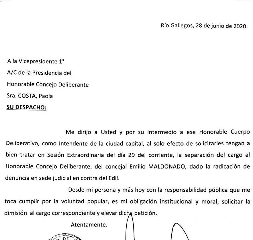 La nota presentada por Pablo Grasso ante los concejales.
