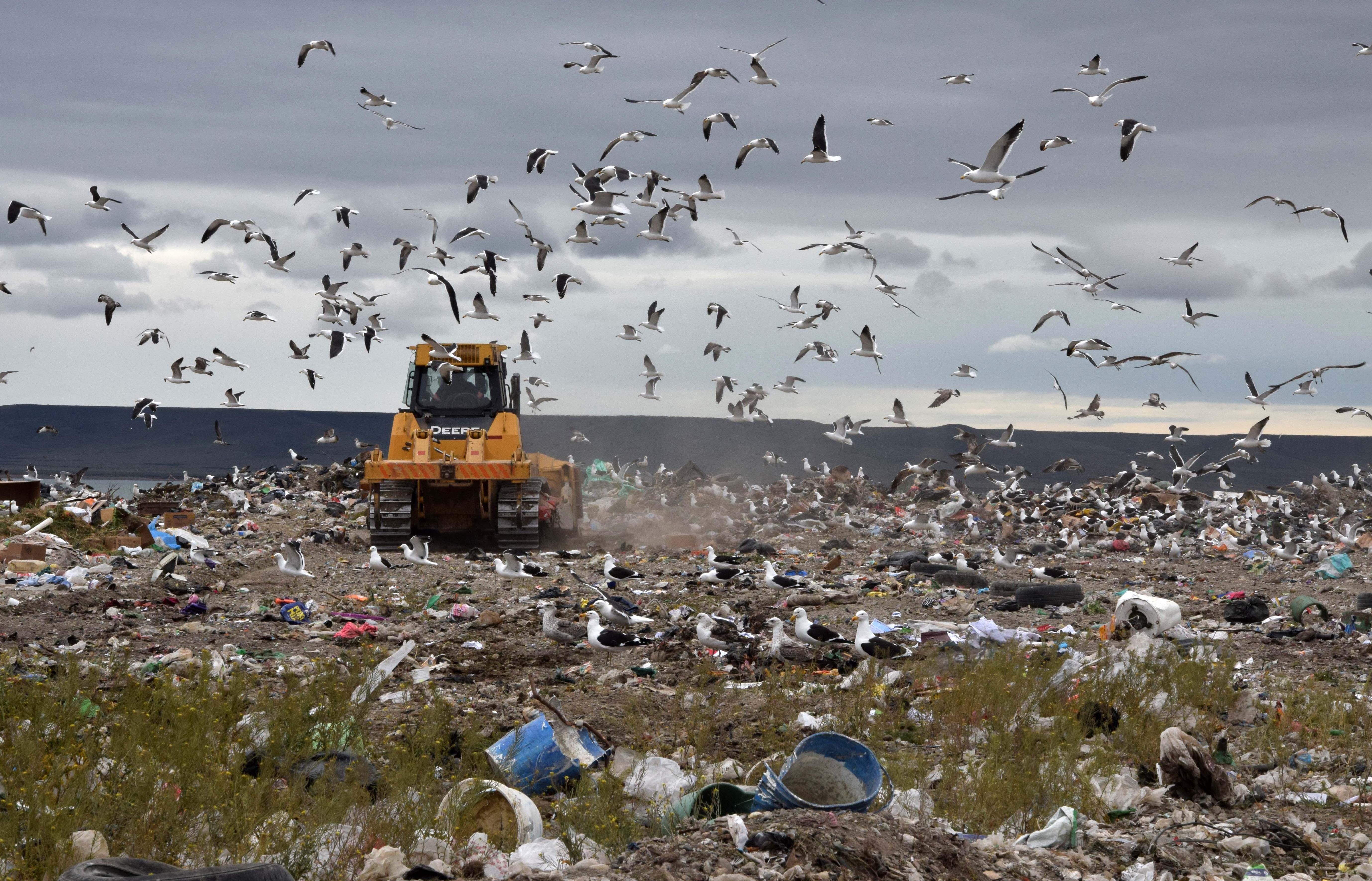 Buscan centralizar el tratamiento de los Residuos Sólidos Urbanos. FOTO: GOBIERNO