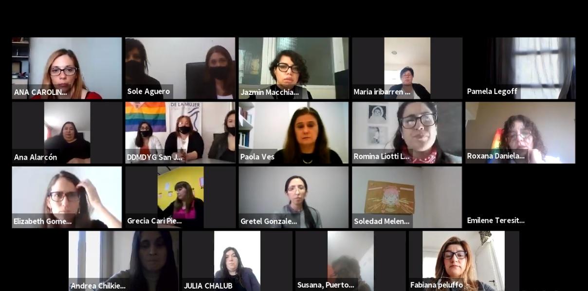 Videoconferencia con la participación de las áreas de mujer y diversidad de las distintas municipalidades de Santa Cruz