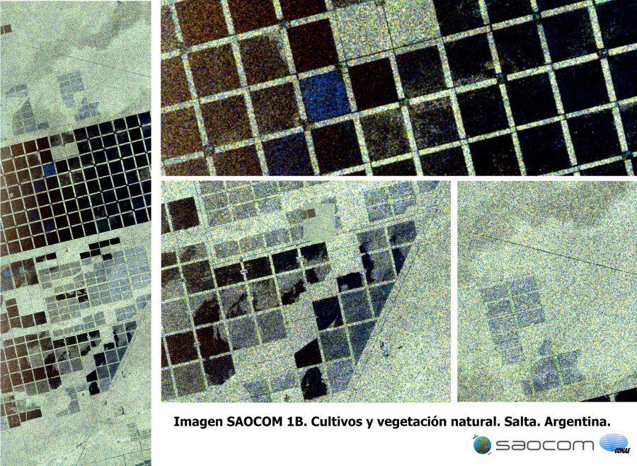 Imágenes de los cultivos y vegetación en la provincia de Salta.