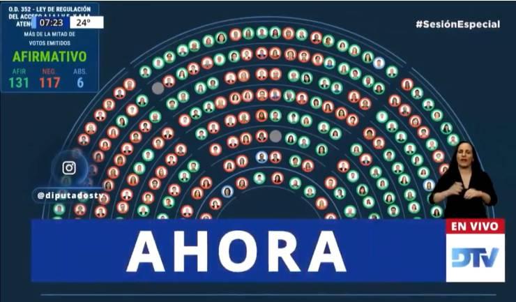La votación en Diputados: 131 a favor, 117 en contra, 6 abstenciones.