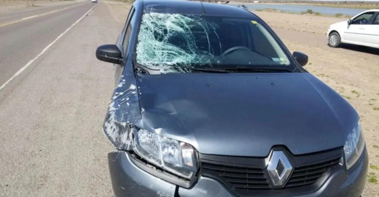 El auto del médico que atropelló y mató a Ronald.
