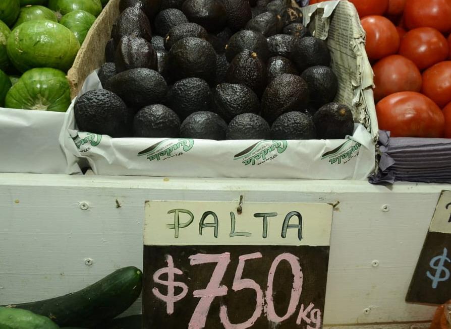 La palta lidera los precios más altos. FOTO: JOSÉ SILVA/LA OPINIÓN AUSTRAL